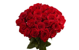 خواص، رایحه و نت بوی عود گل رز سرخ